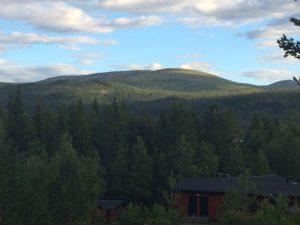 En härlig utsikt från stugan sommar som vinter.